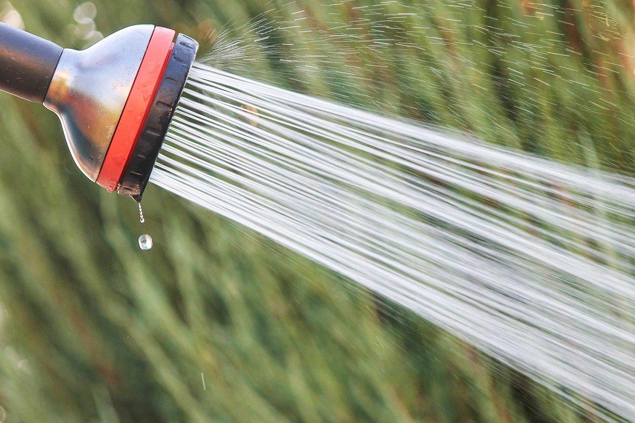 Jaka pompa będzie najlepsza do podlewania trawnika?